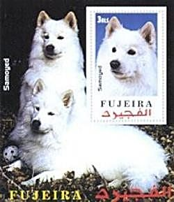 Samoyed Souvenir Sheet from Fujeira -- 2000